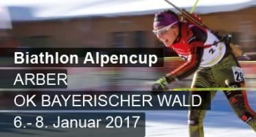teaser-alpencup_2017-01.indd